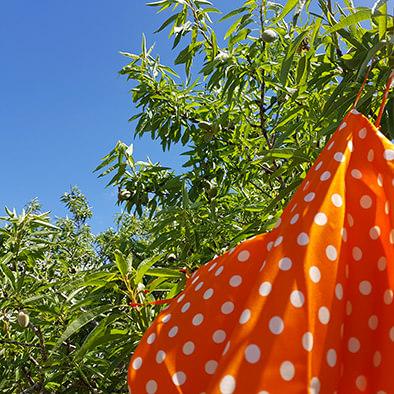 Caraco en soie française orange, col. Twiggy | JEANNE VOILIER